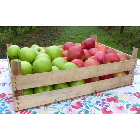 10 kg savanykás alma