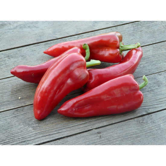 Paprika - kápia