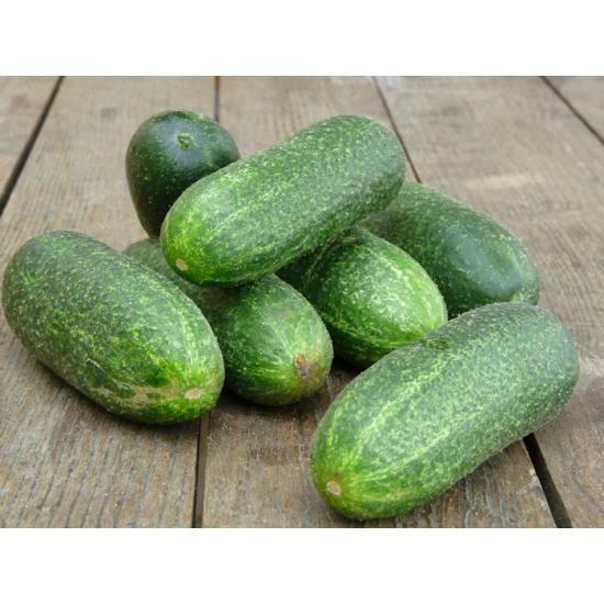 Uborka (saláta)
